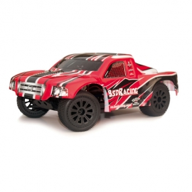 1:16 BUGGY BSD-Racing BS312T TRUCK