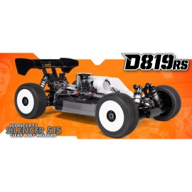HB RACING D819RS